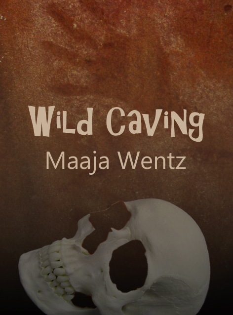 Wild Caving Test Cover