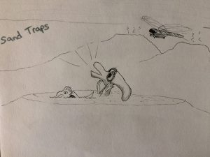 Sand traps killed the dinosaurs drawing